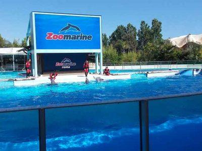 ZOOMARINE_timpani-eventi-noleggio-milano-maxischermo_outdoor